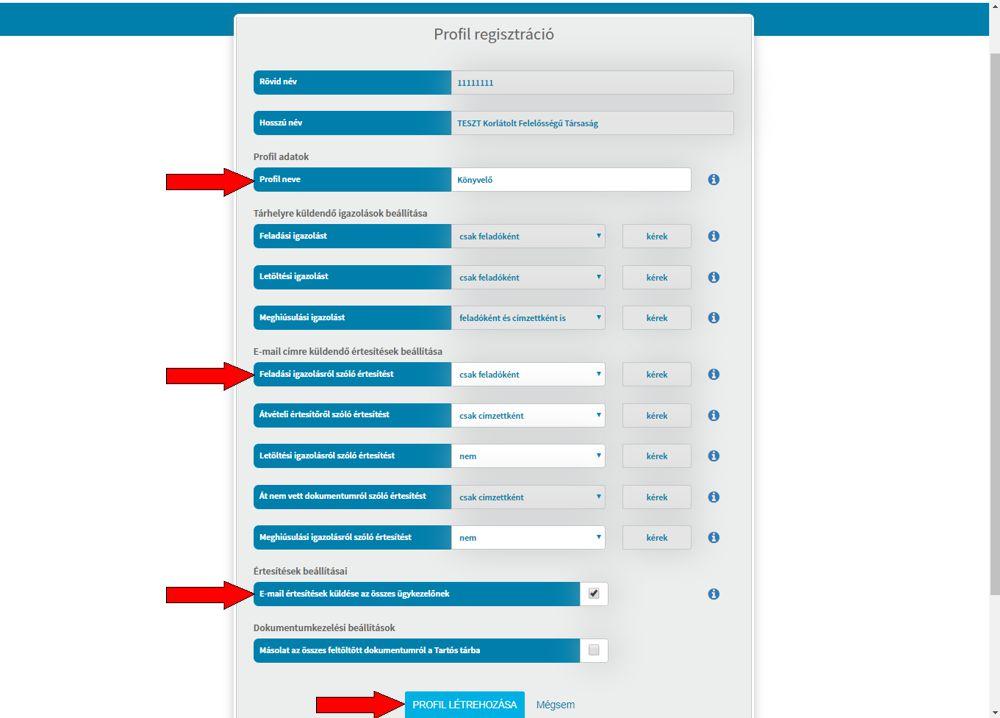 Cégkapu ügykezelő regisztráció 8